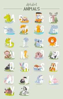 Alfabeto animal gráfico de la a a la z.