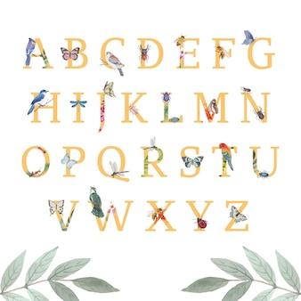 Alfabeto de insectos y pájaros con mariposa, escarabajo, pájaro acuarela ilustración.