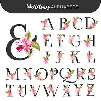 Alfabetos florales de boda rosa hibisco