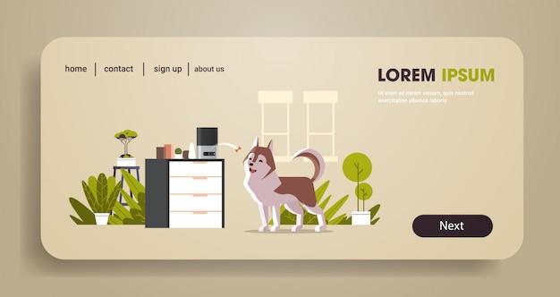 Almacenamiento de alimentos secos para mascotas digitales automáticos arrojando hueso para perro ai alimentador de comida concepto dispensador alimentación animal inteligente horizontal de longitud completa