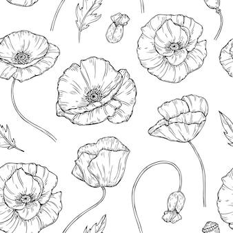 Amapolas flor boceto dibujo pared arte planta