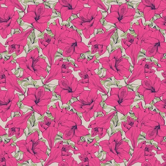 Amaryllis flor sin patrón floral