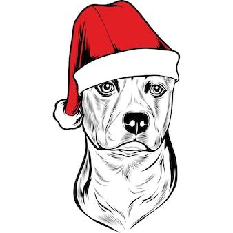 American staffordshire terrier perro con gorro de papá noel para navidad