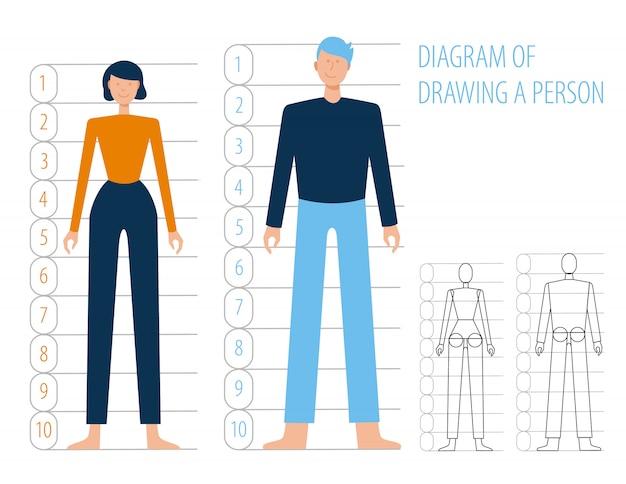 Anatomía del cuerpo humano hombre y mujer. esquema de construcción y dibujo simple plano humano, dibujos animados. estructuras corporales en pleno crecimiento.