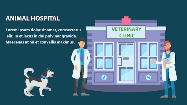 Animal hospital flat web banner vector plantilla