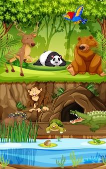 Animal salvaje en la selva