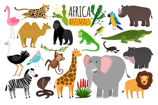 Animales africanos