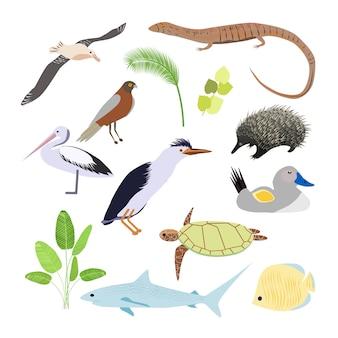 Animales australianos ilustración en estilo plano. los principales símbolos del país.