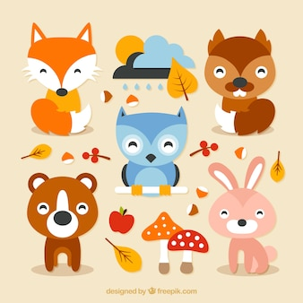 Animales del bosque encantador