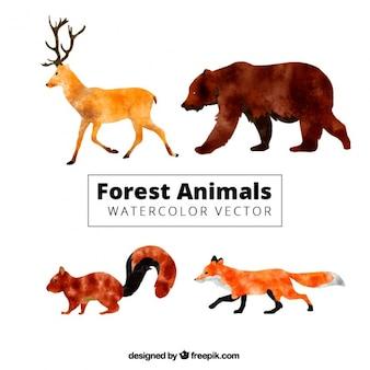 Animales del bosque de perfil en efecto acuarela