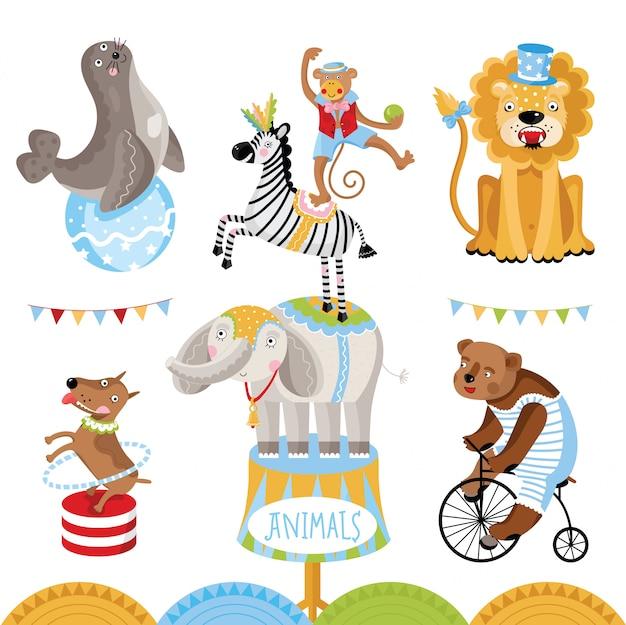 Animales de circo realizando colección de trucos