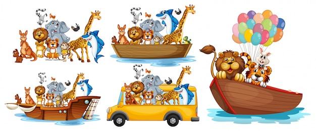 Animales en diferentes tipos de transporte.