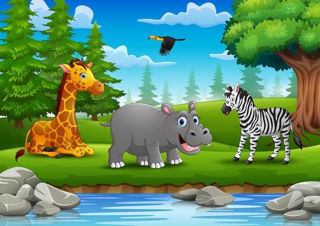 Los animales disfrutan de la naturaleza junto al río.