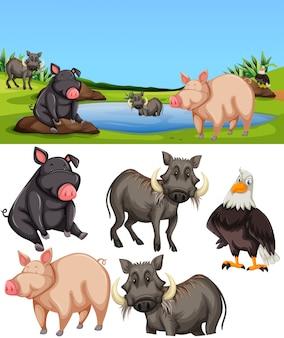 Animales en escena de estanque