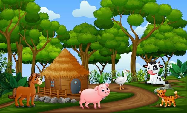 Animales felices disfrutando en tierra de cultivo