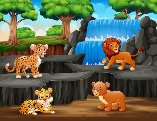 Animales graciosos con paisaje de cascada