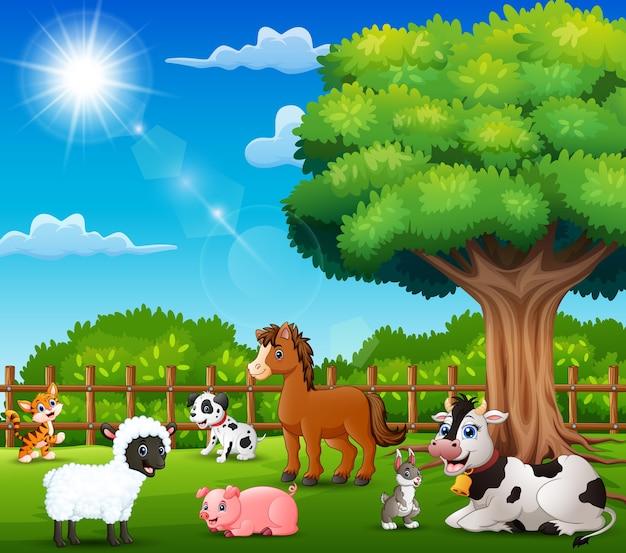 Los animales de granja disfrutan de la naturaleza junto a la jaula.