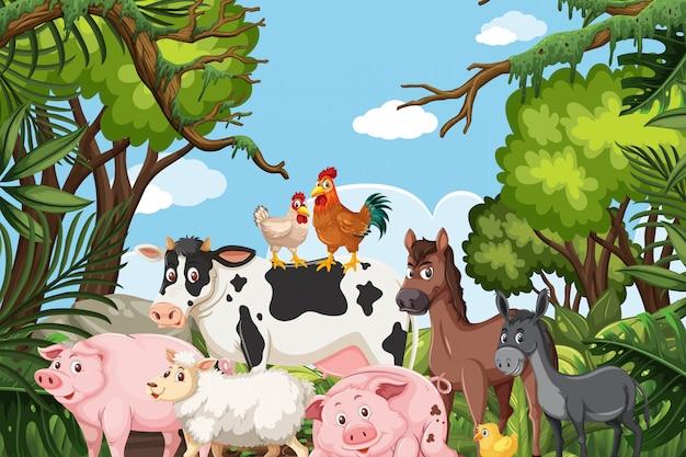 Animales de granja en escena de la jungla
