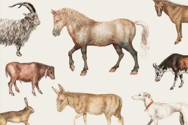 Animales de granja rural