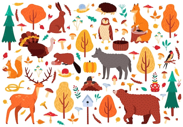 Animales lindos de otoño. dibujado a mano salvaje oso mapache zorro y ciervos personajes, aves del bosque y animales ilustración conjunto de iconos. pájaro y oso del bosque, ciervo otoñal y zorro del bosque