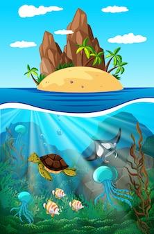 Animales marinos nadando bajo el agua