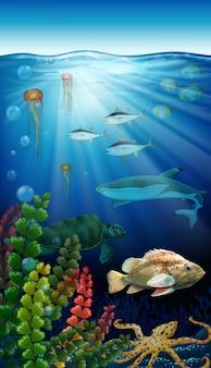 Animales marinos viviendo bajo el mar