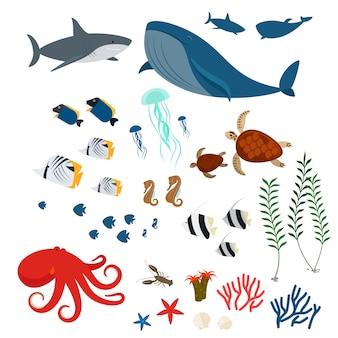 Animales y peces del océano.