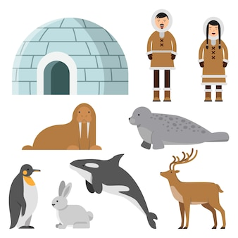 Animales polares, árticos y residentes del norte cerca de la casa de hielo esquimal