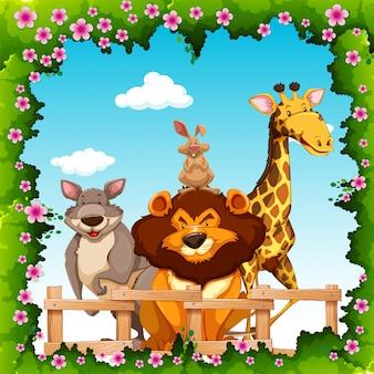 Animales salvajes detrás de la cerca