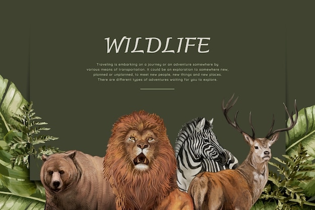 Animales salvajes dibujados a mano