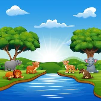 Los animales salvajes están disfrutando de la naturaleza junto al río.