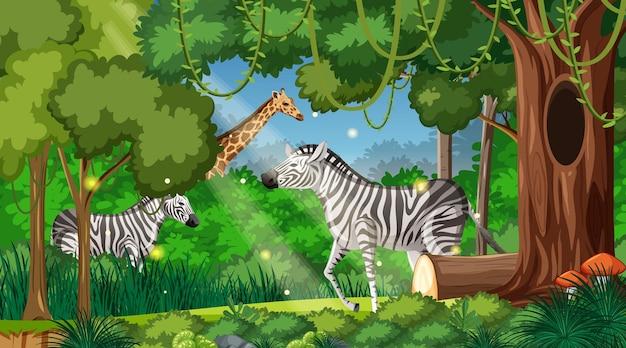Animales salvajes en el fondo del paisaje forestal