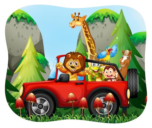 Animales salvajes montando en jeep
