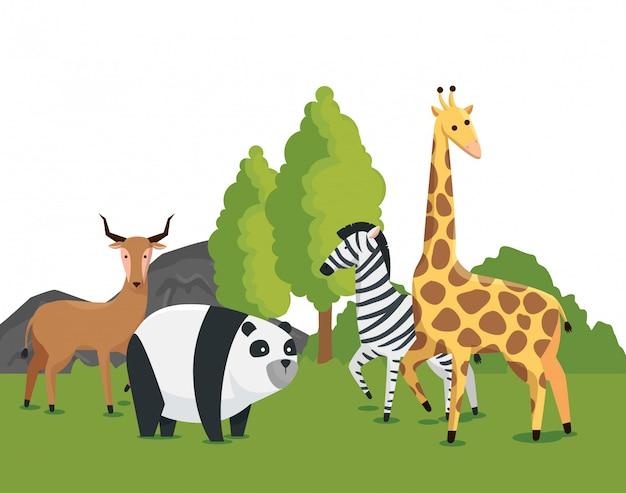 Animales salvajes en la naturaleza safari conservación