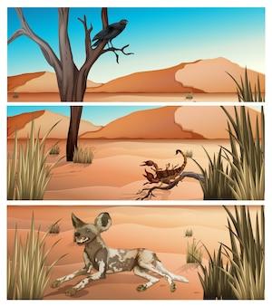 Animales salvajes que viven en el postre.
