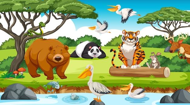 Animales salvajes en la selva.