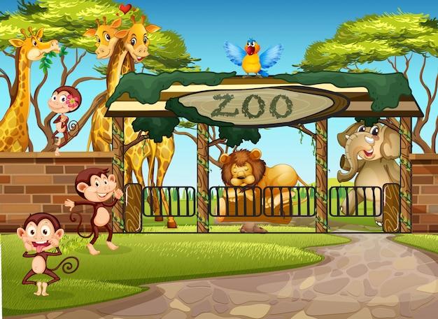 Animales salvajes en el zoológico
