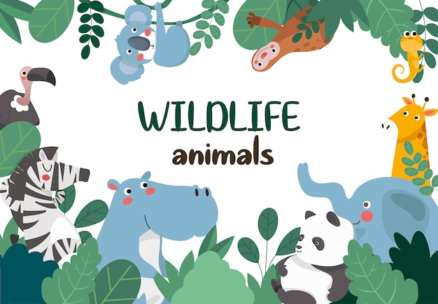 Animales de la selva, marco.