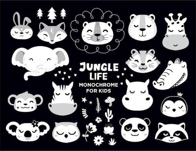 Animales de la vida de la selva para el elemento de baby shower