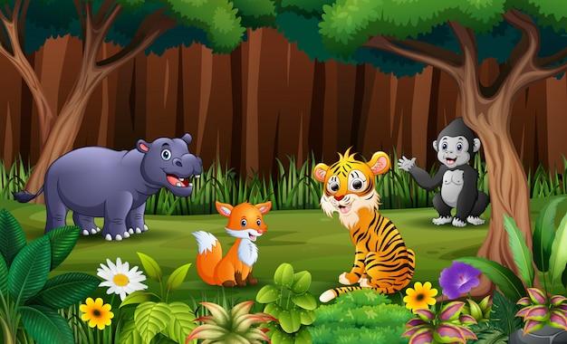 Animlas salvajes jugando en el parque