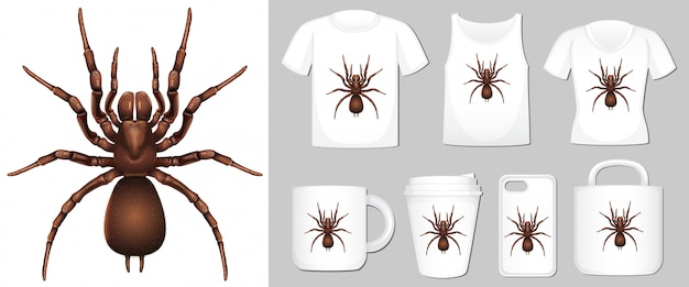 Araña en diferentes plantillas de productos