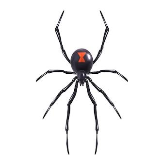 Araña realista aislada