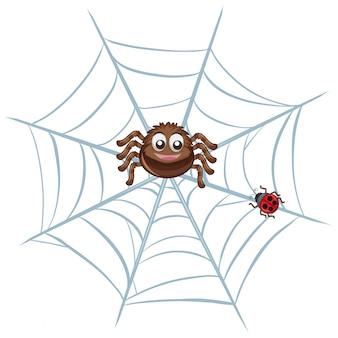 Araña en la red