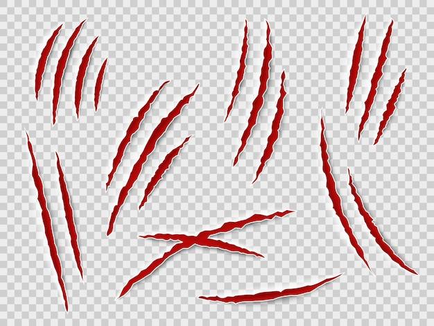 Arañazos de garras. rastros de garras de animales, gato o tigre, oso o león atacan arañazos en las uñas. thriller horror, vector de monstruo de halloween rayado conjunto aislado marcado
