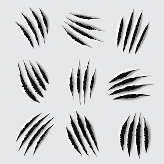 Arañazos y marcas de garras de patas de animales.