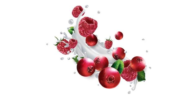 Arándanos y frambuesas y un chorrito de yogur o leche sobre un fondo blanco. ilustración realista.