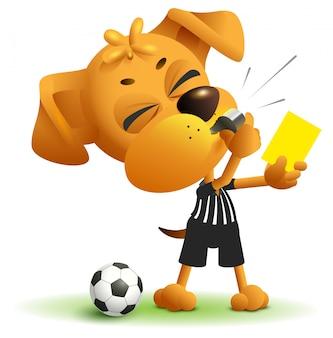 Árbitro perro muestra tarjeta amarilla. violación de las reglas al jugar fútbol.