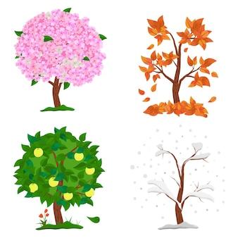 Árbol en cuatro estaciones: primavera, verano, otoño e invierno.