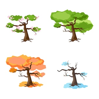 Árbol en cuatro estaciones primavera verano otoño invierno aislado sobre fondo blanco conjunto de árboles