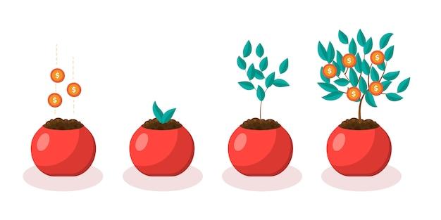 Árbol de dinero en maceta. depositar. etapa de crecimiento.